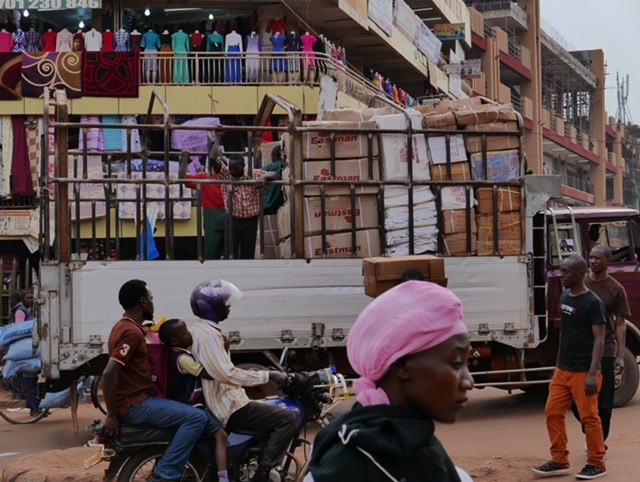 Hannes-Swoboda-Afrika-Tagebuch